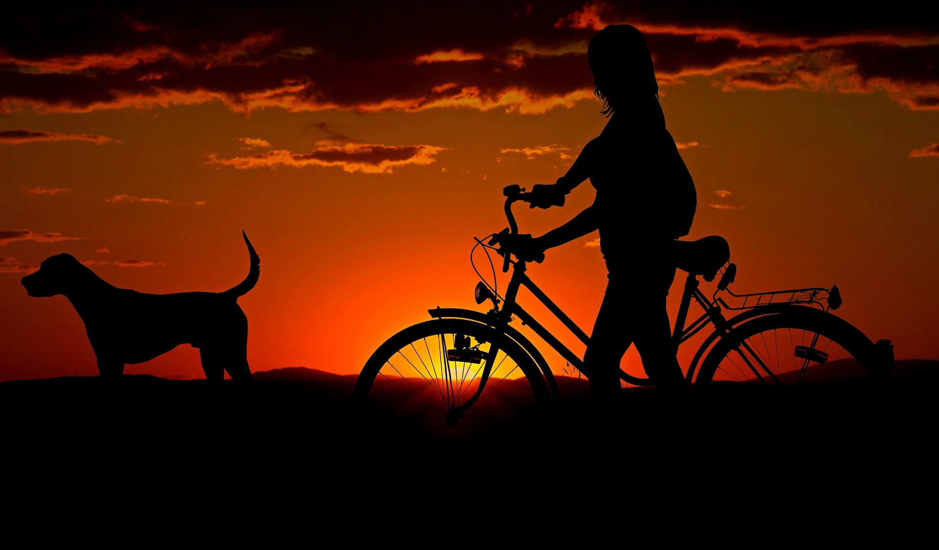 Zaprzyjaźnij się z rowerem